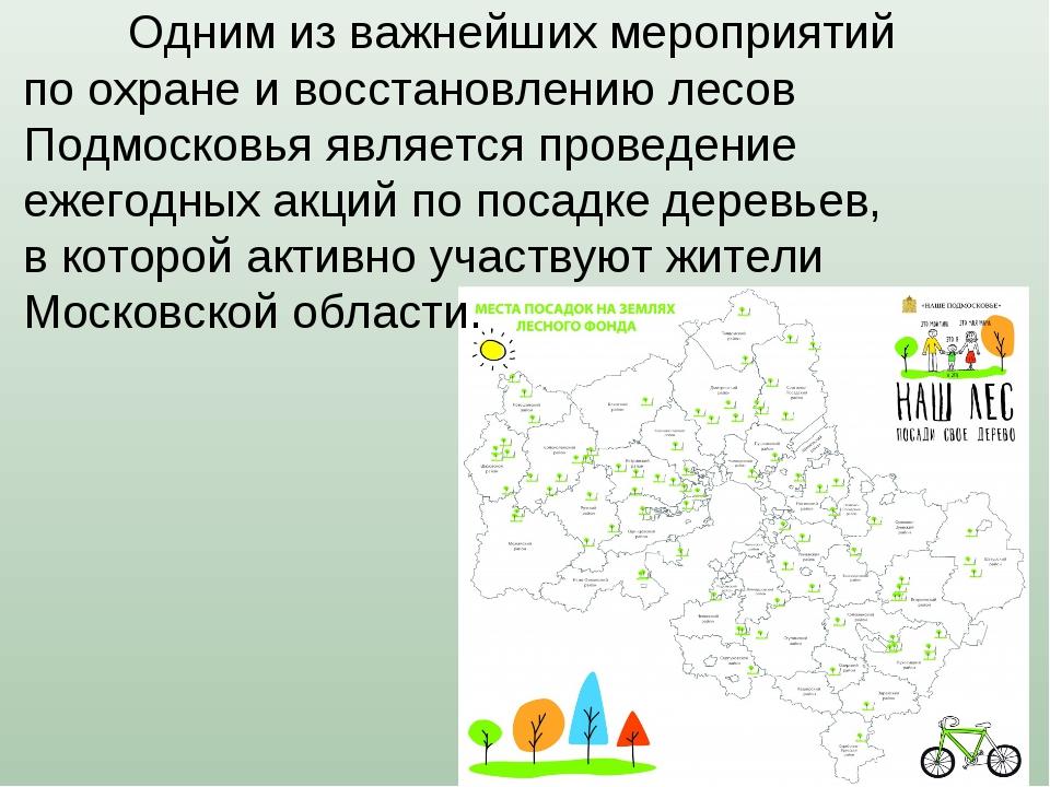 Одним из важнейших мероприятий по охране и восстановлению лесов Подмосковья...