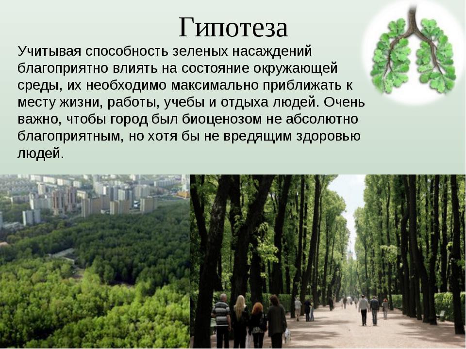 Гипотеза Учитывая способность зеленых насаждений благоприятно влиять на состо...