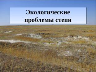 Экологические проблемы степи