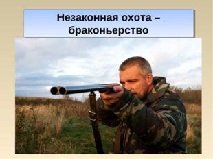 Незаконная охота – браконьерство