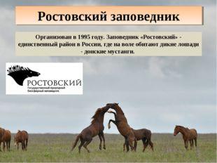 Ростовский заповедник Организован в 1995 году. Заповедник «Ростовский» - един
