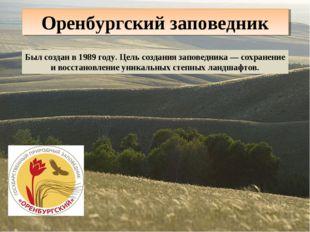 Оренбургский заповедник Был создан в 1989 году. Цель создания заповедника — с