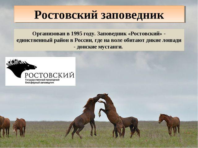 Ростовский заповедник Организован в 1995 году. Заповедник «Ростовский» - един...