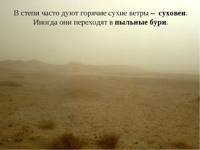 В степи часто дуют горячие сухие ветры – суховеи. Иногда они переходят в пыль...