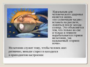 Идеальным для человеческого здоровья является жизнь «посолнечным часам»: вс