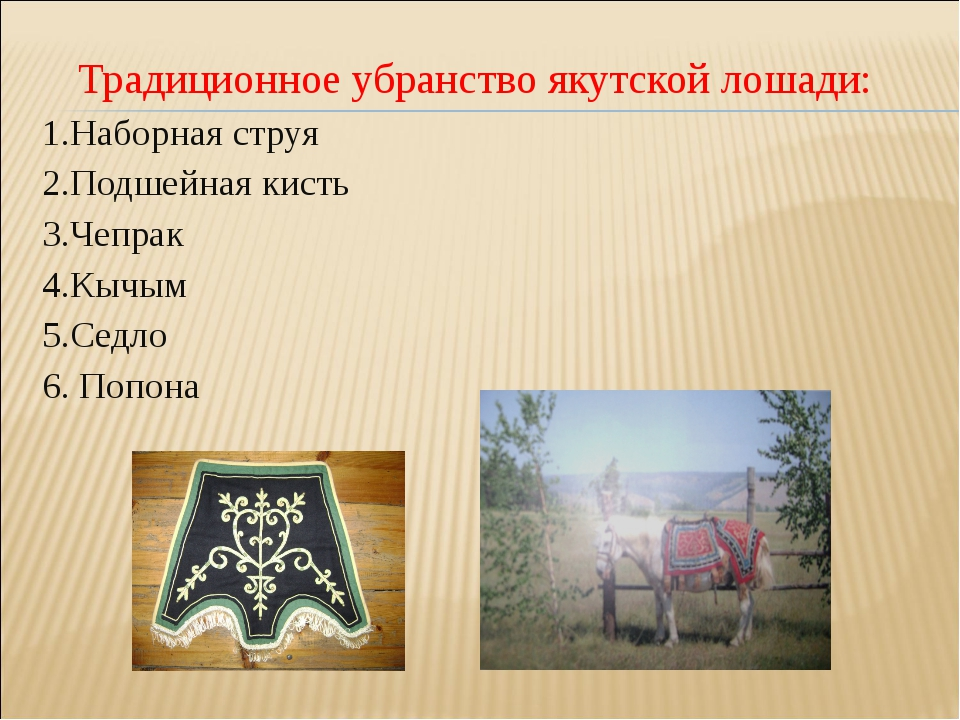 Традиционное убранство якутской лошади: 1.Наборная струя 2.Подшейная кисть 3...
