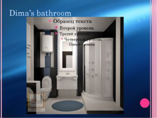Dima's bathroom