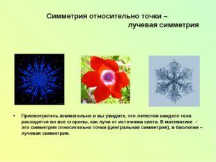 Симметрия относительно точки – лучевая симметрия Присмотритесь внимательно и