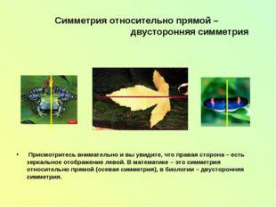 Симметрия относительно прямой – двусторонняя симметрия Присмотритесь внимател