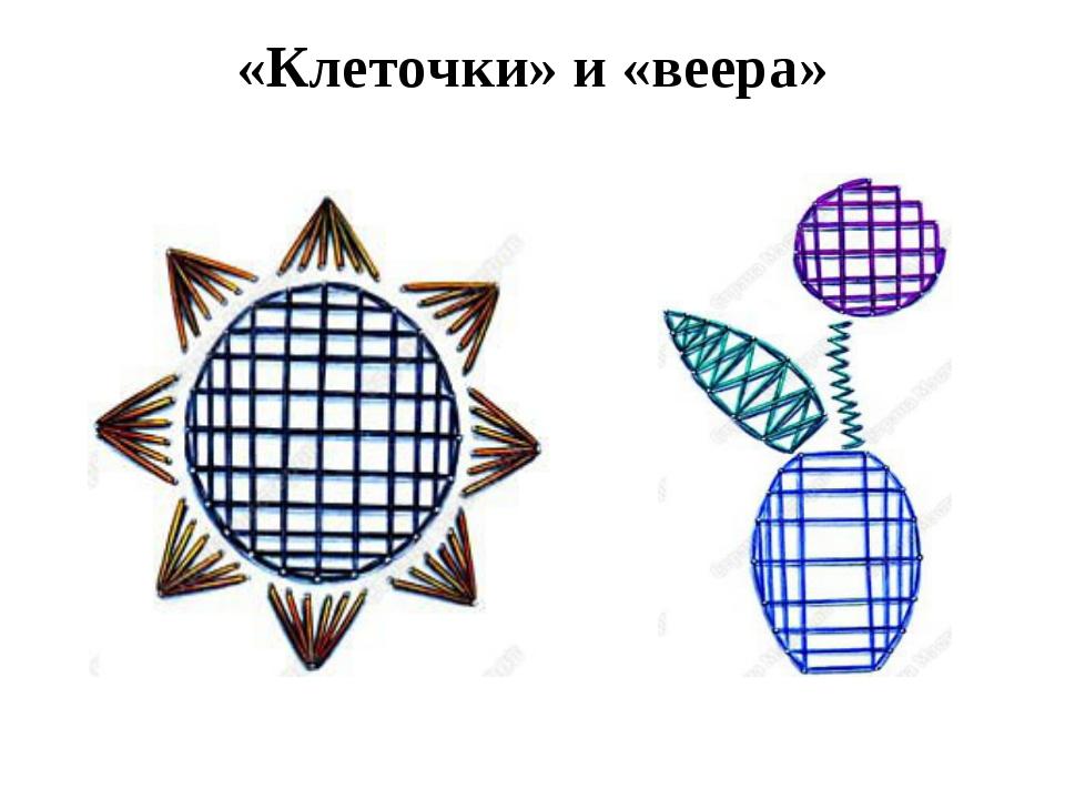 «Клеточки» и «веера»