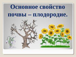 Основное свойство почвы – плодородие.