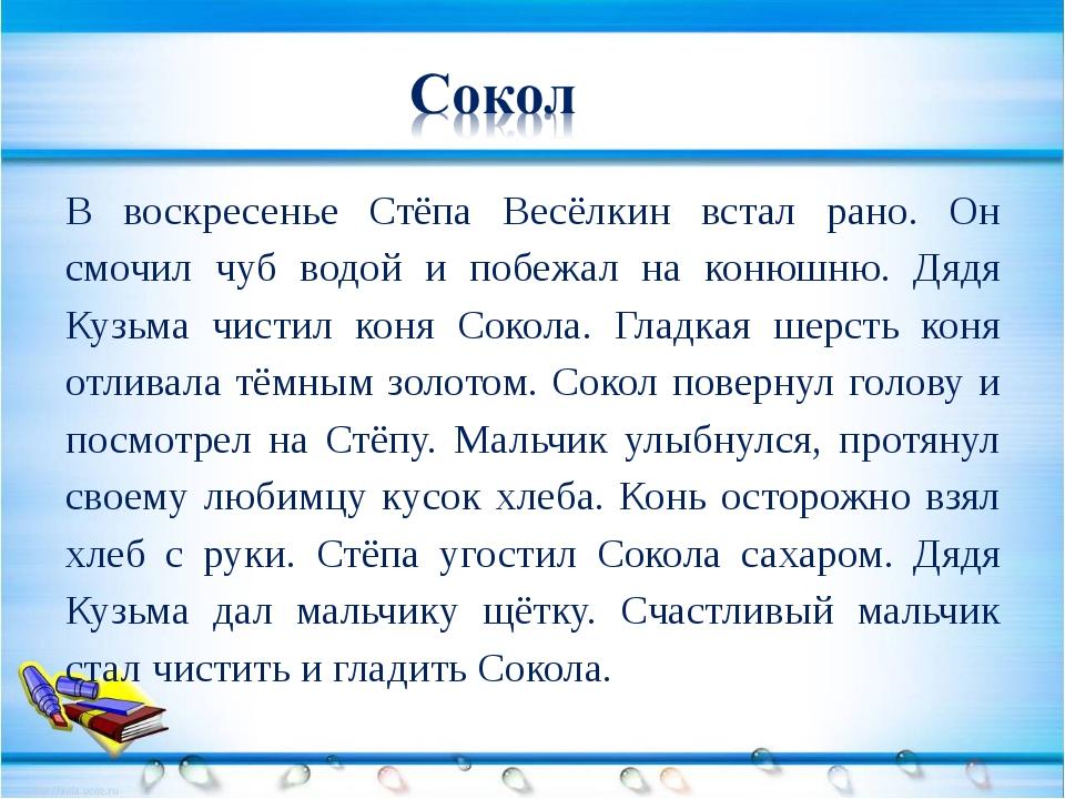 В воскресенье Стёпа Весёлкин встал рано. Он смочил чуб водой и побежал на ко...