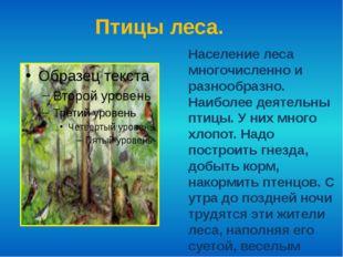 Птицы леса. Население леса многочисленно и разнообразно. Наиболее деятельны п