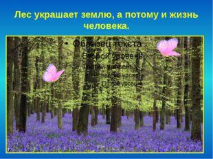 Лес украшает землю, а потому и жизнь человека.
