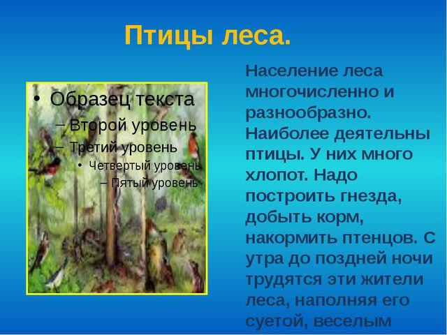 Птицы леса. Население леса многочисленно и разнообразно. Наиболее деятельны п...
