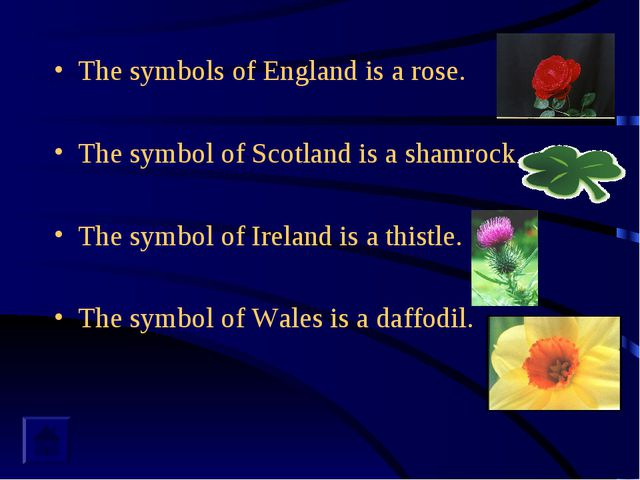 The symbols of England is a rose. The symbol of Scotland is a shamrock. The s...