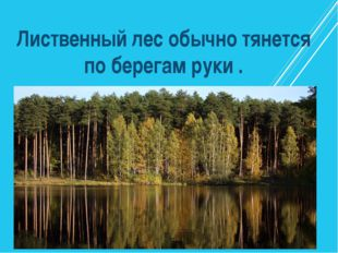Лиственный лес обычно тянется по берегам руки .