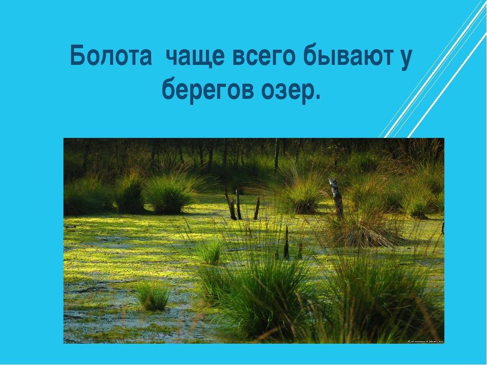Болота чаще всего бывают у берегов озер.