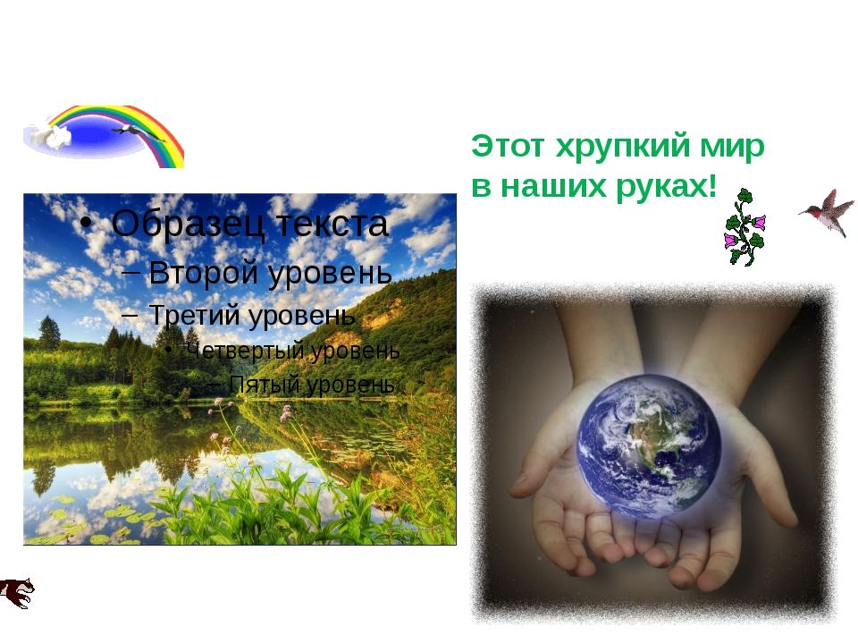 Берегите природу! Этот хрупкий мир в наших руках!