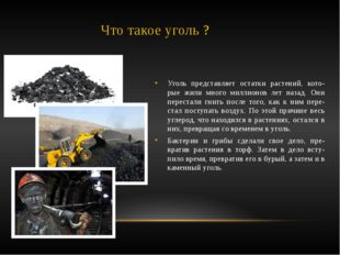 Что такое уголь ? Уголь представляет остатки растений, кото-рые жили много ми