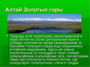 Алтай Золотые горы Природа этой территории, расположенной в горах Алтая на ст