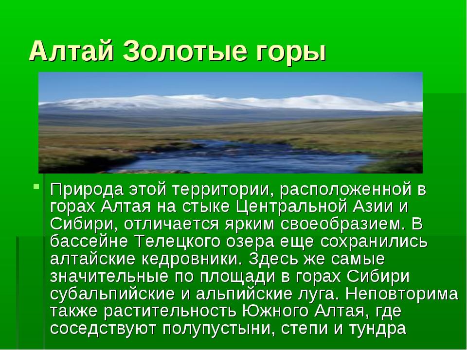 Алтай Золотые горы Природа этой территории, расположенной в горах Алтая на ст...