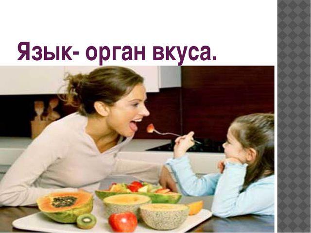 Язык- орган вкуса.