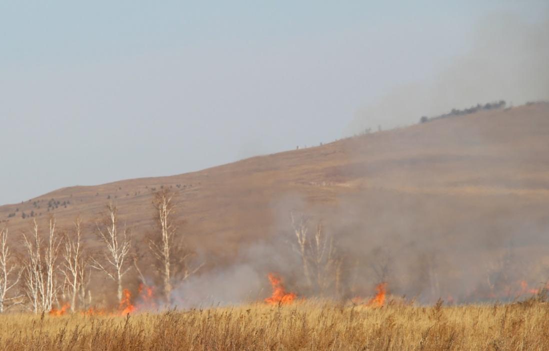 G:\Пожары\фото\отжиги травы 14\IMG_9295.JPG