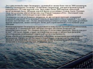 Это единственный в мире Океанариум, удаленный от океана более чем на 3000 кил