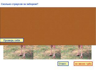 Сколько страусов за забором? Ответ: не менее трёх Проверь себя
