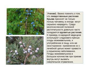 Ученик1. Важно помнить о том, что лекарственные растения Крыма приносят не т