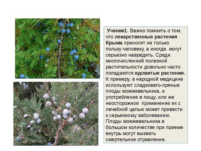 Ученик1. Важно помнить о том, что лекарственные растения Крыма приносят не т...