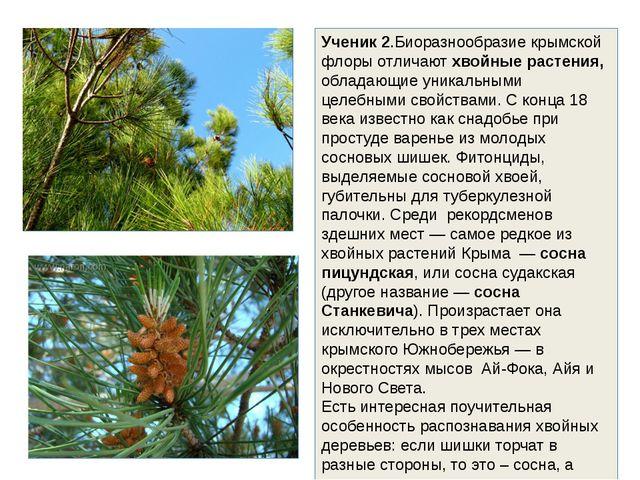 Ученик 2.Биоразнообразие крымской флоры отличают хвойные растения, обладающие...