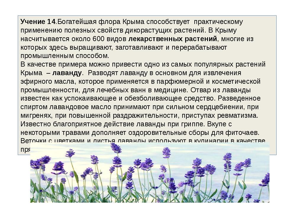 Учение 14.Богатейшая флора Крыма способствует практическому применению полез...