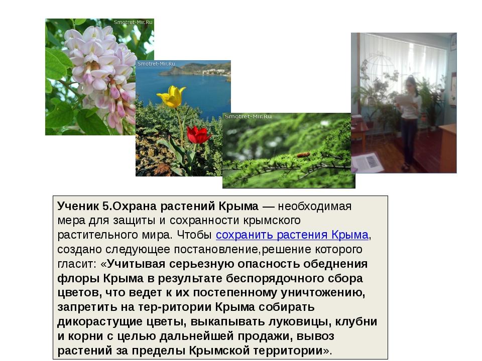 Ученик 5.Охрана растений Крыма— необходимая мера для защиты и сохранности кр...