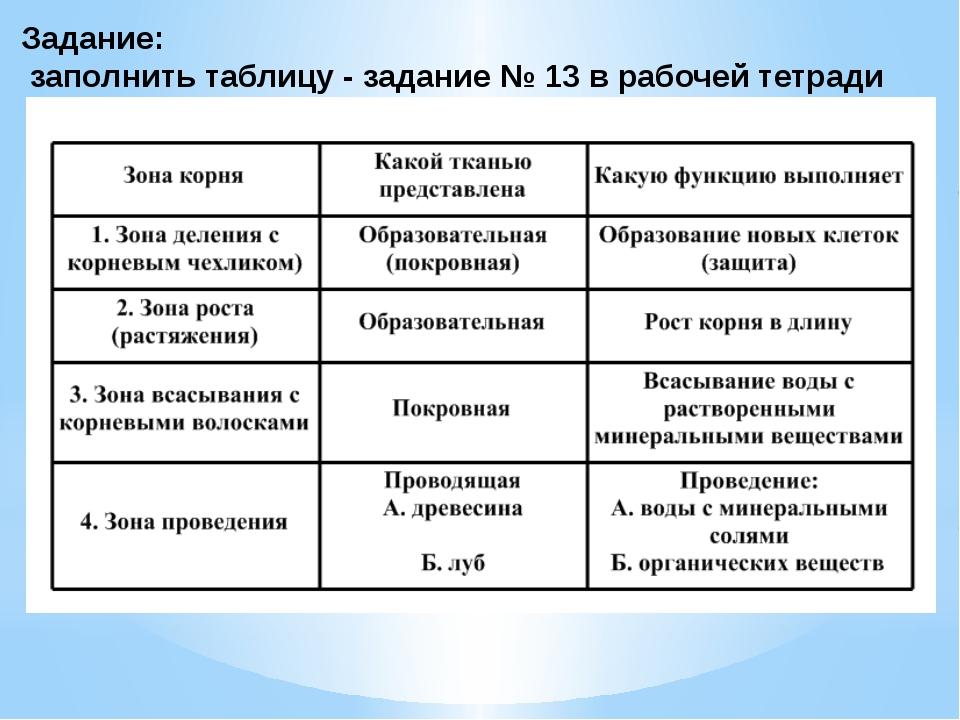 Задание: заполнить таблицу - задание № 13 в рабочей тетради