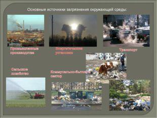 Основные источники загрязнения окружающей среды: