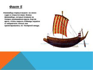 Финикийцы первые вышли на своих судах в открытое море. Воины финикийцы, кото