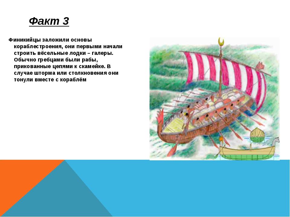 Финикийцы заложили основы кораблестроения, они первыми начали строить вёсельн...