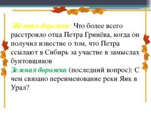 Жёлтая дорожка: Что более всего расстроило отца Петра Гринёва, когда он пол
