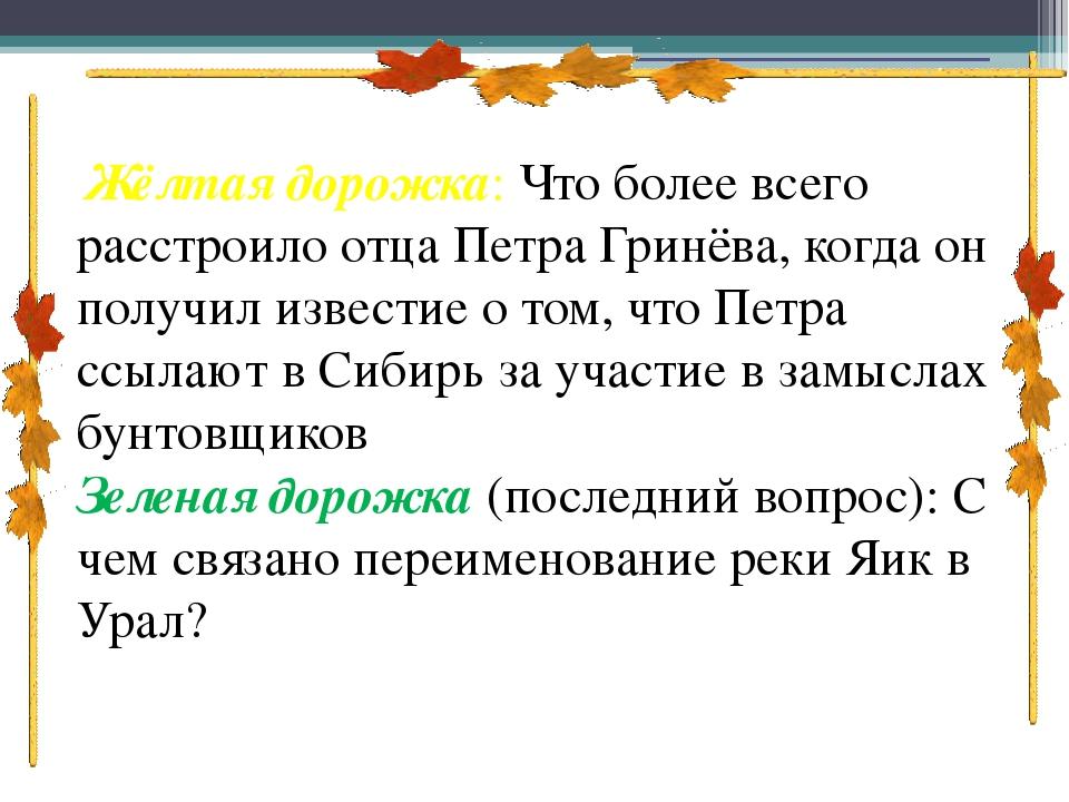 Жёлтая дорожка: Что более всего расстроило отца Петра Гринёва, когда он пол...