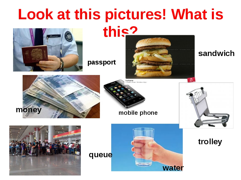 Look at this pictures! What is this? water sandwich passport trolley queue mo...