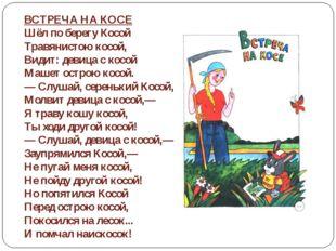 ВСТРЕЧА НА КОСЕ Шёл по берегу Косой Травянистою косой, Видит: девица с кос