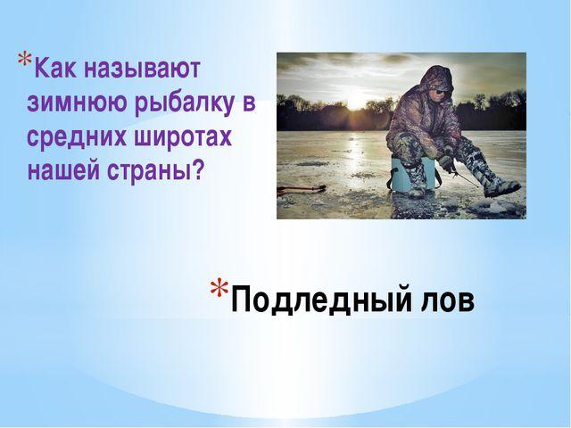 Подледный лов Как называют зимнюю рыбалку в средних широтах нашей страны?