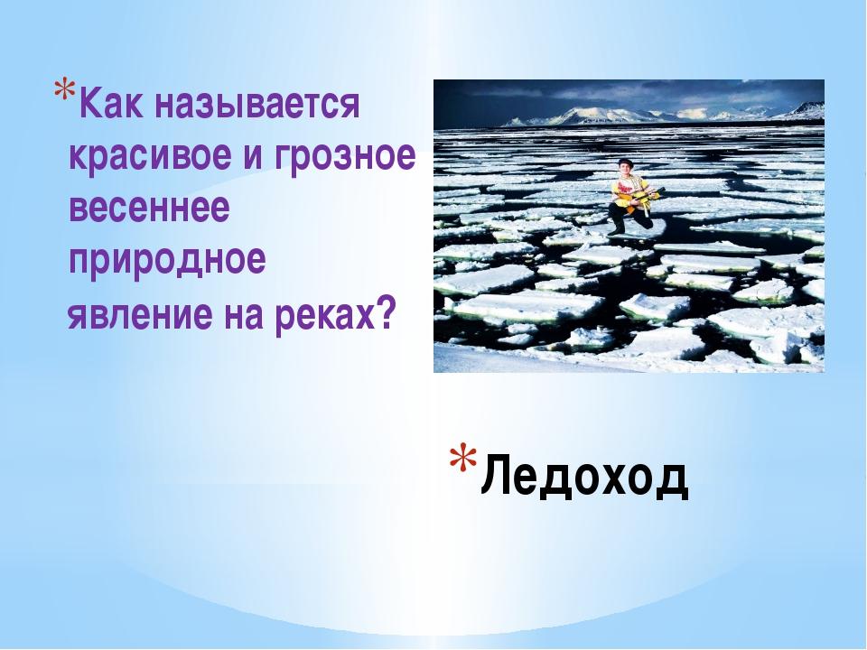 Ледоход Как называется красивое и грозное весеннее природное явление на реках?