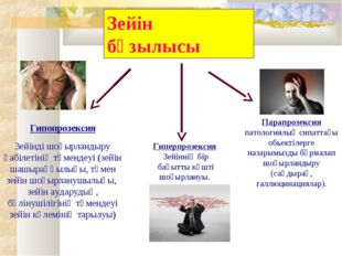 Зейін бұзылысы Гипопрозексия Зейінді шоғырландыру қабілетінің төмендеуі (зейі
