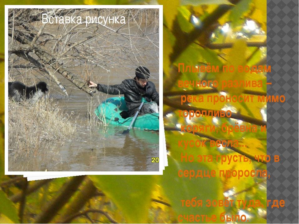Плывём по водам вечного разлива – река проносит мимо торопливо коряги, брёв...