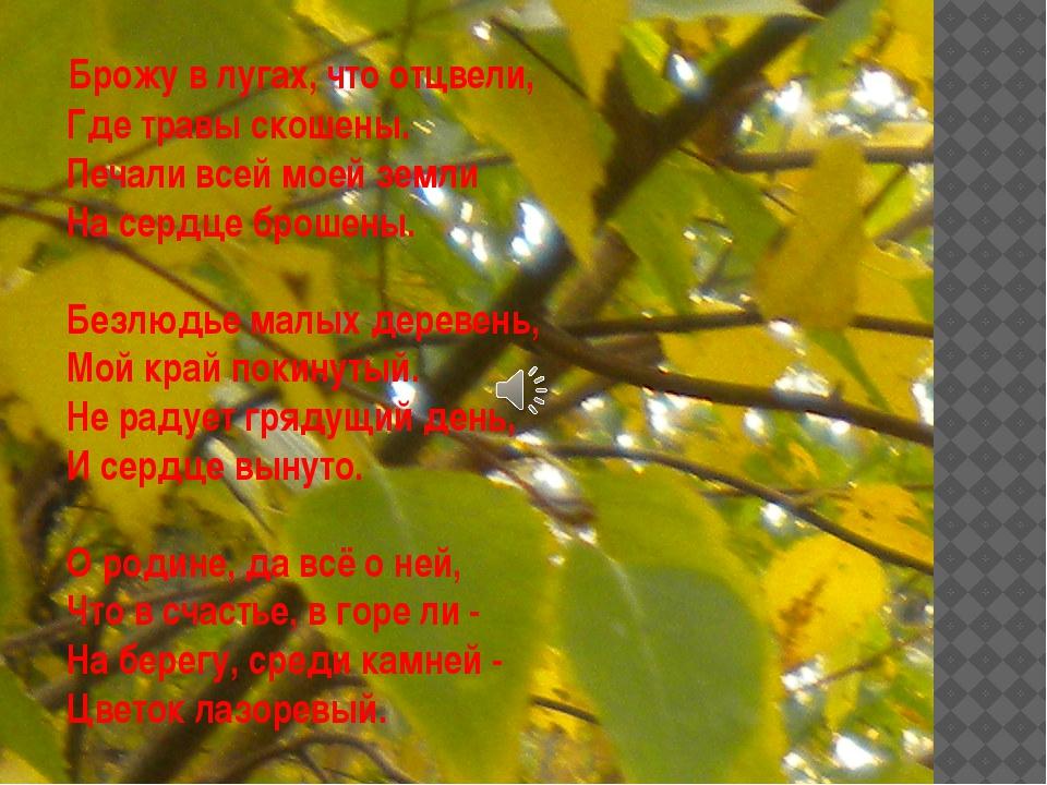 Брожу в лугах, что отцвели, Где травы скошены. Печали всей моей земли На...