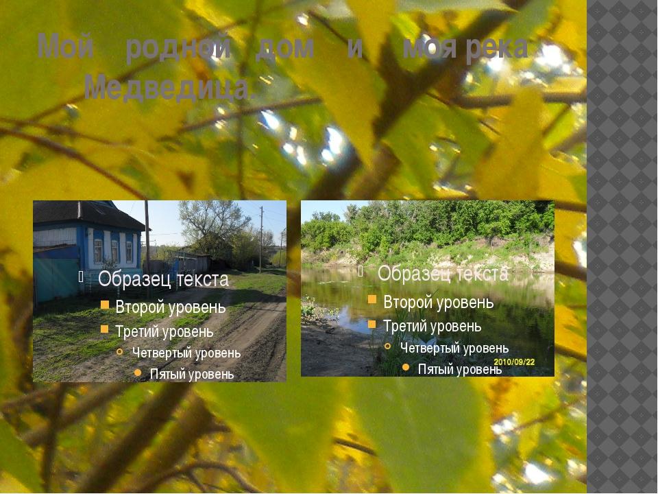 Мой родной дом и моя река Медведица.
