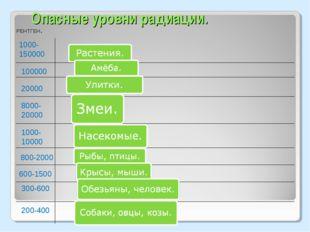 Опасные уровни радиации. РЕНТГЕН. 1000- 150000 100000 20000 8000- 20000 1000-